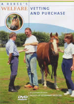A HORSE'S WELFARE Vetting And Purchase