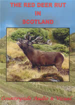 THE RED DEER RUT IN SCOTLAND